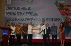 Hebat! 2.700 Petani Sawit Mitra Wilmar Raih Sertifikat RSPO - JPNN.com