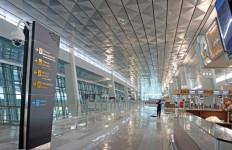 Terminal 3 Banjir, Carmelita: Upaya Penambahan Kapasitas Bandara Harus Didukung - JPNN.com