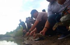 Inilah Modus Baru Penyelundupan Kepiting Bertelur ke Malaysia - JPNN.com