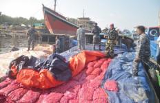 Lima Ton Bawang Merah Ilegal Diamankan Polisi - JPNN.com