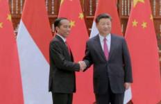 30 Menit Bertemu, Jokowi dan Xi Jinping Sepakati Tiga Hal - JPNN.com