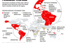 Pelancong dari Negara Terdampak Zika Dilarang Berhubungan Badan 6 Bulan - JPNN.com