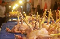 Duhhh..Harga Ayam Pedaging Kok Mahal - JPNN.com