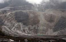 Pajak Freeport Mencurigakan, DPRD Papua Bentuk Tim Investigasi - JPNN.com