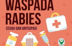 Setop Kematian akibat Rabies, Lakukan Langkah Pencegahannya - JPNN.com