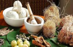 5 Herbal ini Baik untuk Kesehatan Anda - JPNN.com