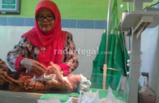 Kasihan, Bayi Baru Lahir Dibuang di Dekat Kandang Ayam - JPNN.com