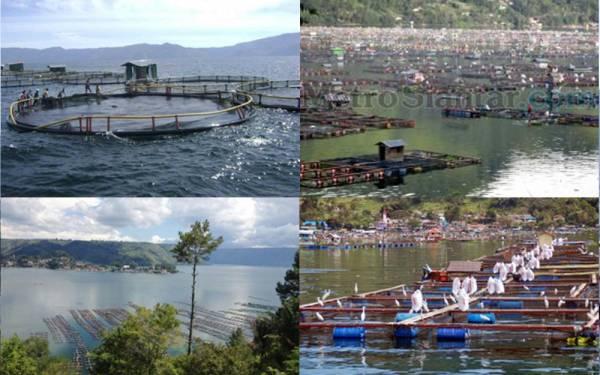 Asyik! Danau Toba Bebas Keramba Januari 2017 - JPNN.com