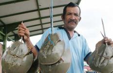 Balai Karantina Gagalkan Penyelundupan Ratusan Binatang Aneh Ini - JPNN.com