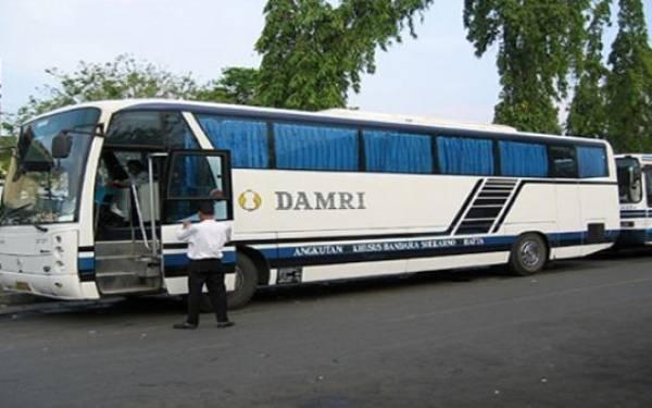 Perum Damri Luncurkan 30 Unit Bus Baru - JPNN.com