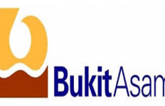 Bukit Asam Bidik 3 Proyek PLTU di Myanmar - JPNN.com