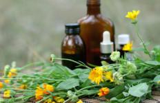 Dalami Obat Herbal untuk Cegah Kanker - JPNN.com