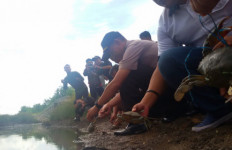 Selangkah Lagi, Maskapai Malaysia Angkut Kepiting Kaltara - JPNN.com