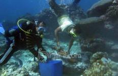 Mengikuti Ekspedisi Harta Karun di Dasar Laut Mentawai - JPNN.com