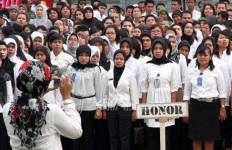 Tuding 451 Honorer K2 Bodong Diangkat jadi CPNS - JPNN.com