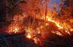Lahan Terbakar, HGU 10 Perusahaan Dievaluasi - JPNN.com