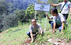 459 Pohon dari Wismilak Foundation untuk Hutan Mendiro - JPNN.com
