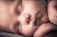 Suami Istri Berniat Jual Bayi, Begini Penjelasan BPJS - JPNN.com