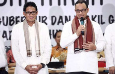 Kelompok Relawan Jokowi Ini Ogah Dukung Ahok - JPNN.com