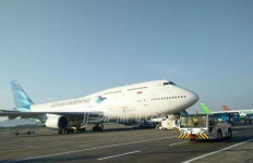 Tiga Kadal Lepas dari Boks, Garuda Indonesia: Kemasan Tidak Sesuai Standar - JPNN.com