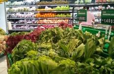 Mau Jadi Vegetarian? Simak Tips ini - JPNN.com
