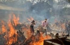 Sungguh Songong, Partai Komunis Tiongkok Ejek Kremasi Massal Korban COVID-19 di India - JPNN.com