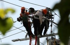Yakini Sengon Bukan Sebab Tunggal Blackout, Bu Dirut PLN Minta Waktu Tuntaskan Investigasi - JPNN.com