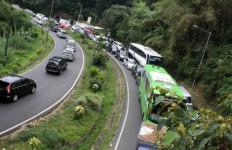 Bupati Ogah Menutup Kawasan Wisata Puncak - JPNN.com