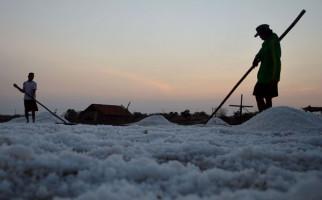 Komisi VI Tagih Keseriusan Pemerintah Mengembangkan Garam Industri - JPNN.com