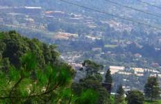 Wisatawan dari Timur Tengah Tetap Mengalir ke Puncak Bogor - JPNN.com
