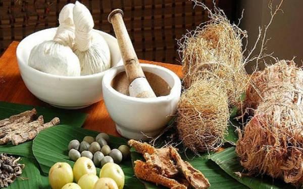 9 Tanaman Herbal ini Bantu Turunkan Berat Badan - JPNN.com