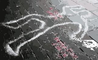 Polisi Tembak Mati Pengedar Narkoba Jaringan Malaysia - JPNN.com