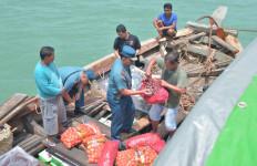 Lagi, TNI AL Tangkap Kapal Bermuatan Bawang Ilegal - JPNN.com