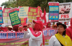 Desak Segera Angkat Bidan Desa PTT jadi PNS - JPNN.com