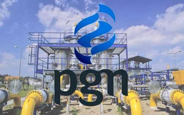 Ini Hasil RUPSLB PGN - JPNN.com