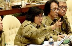 Eskalasi Konflik Hutan Menurun, Menteri Siti Dipuji - JPNN.com