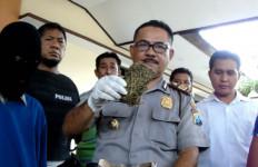 Janda Nekat Sembunyikan Sabu-Sabu di Mulut - JPNN.com