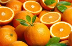 Tingkatkan Kekebalan Tubuh Saat Musim Hujan dengan Vitamin C - JPNN.com