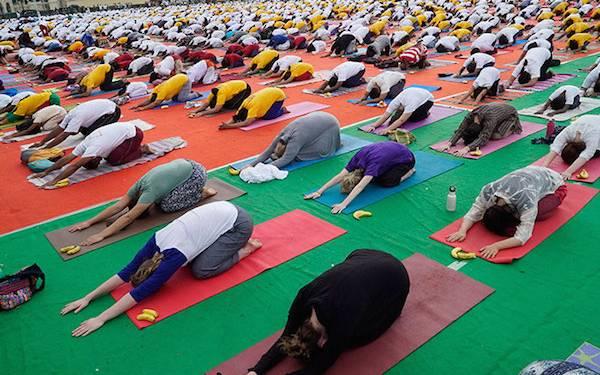 5 Gerakan Yoga ini Efektif Membakar Kalori - JPNN.com