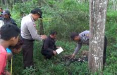Hiii… Kerangka Manusia Ditemukan di Hutan Nongsa - JPNN.com