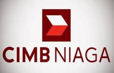Kembangkan IT, CIMB Niaga Siapkan Capex USD 100 Juta - JPNN.com