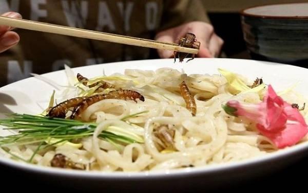 Mie Serangga Ini Hits Banget di Jepang Lho, Mau Coba? - JPNN.com