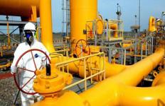 Pemerintah Turunkan Harga Gas untuk Industri, Begini Respons Mamit Setiawan - JPNN.com