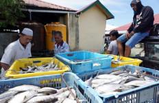 Tembus 36 %, Ekspor Produk Perikanan ke AS Dinilai Tak Sehat - JPNN.com