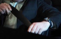 Kocak! Disuruh Pakai Seat Belt, Pasangnya Malah Sampai Leher - JPNN.com
