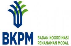 BKPM Harus Waspadai Masalah Keuangan CLFD - JPNN.com