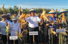 Kementan: 2045, Indonesia Bisa Jadi Lumbung Pangan Dunia - JPNN.com