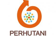 Erick Thohir Rombak Jajaran Dewas Perum Perhutani - JPNN.com