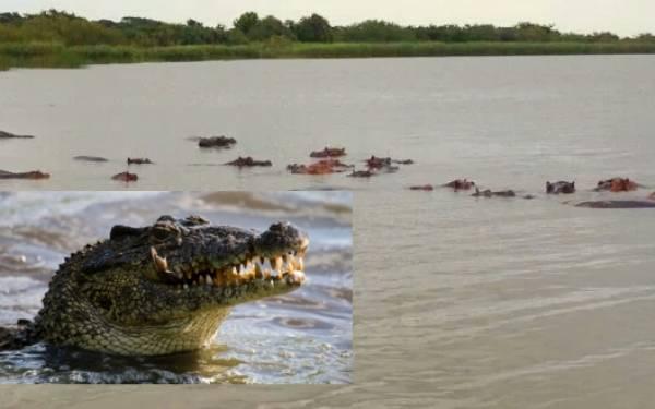 Pengin Seperti Yesus Bisa Berjalan di Atas Air, Oh Begini Jadinya.... - JPNN.com