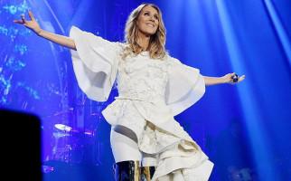 Benarkah Celine Dion Mengoleksi 10 Ribu Sepatu? - JPNN.com